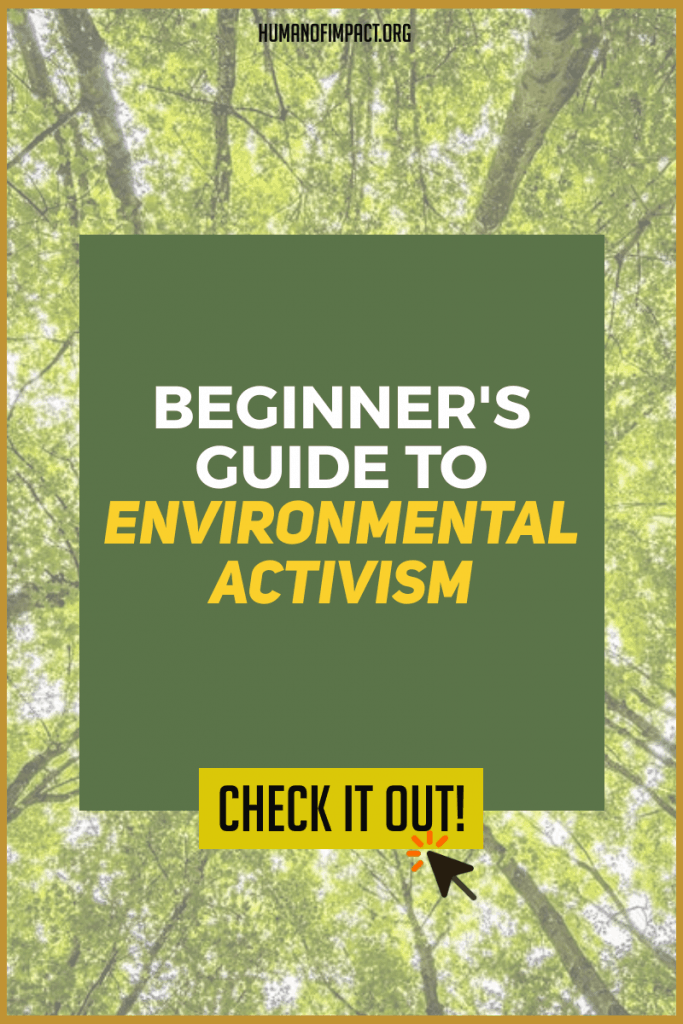 "It's a bigger fight than just ""saving the trees""! This guide will answer all of your questions on how to get started with being an environmentalist."