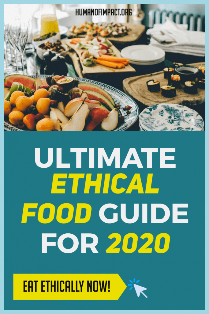 Food is a necessity. This is an in-depth guide on how to make eating food ethical, sustainable, nutritious, AND delicious! #ethicalfood #veganism #ethicalmeats