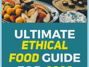 ULTIMATE-ETHICAL-FOOD-GUIDE-2020-Human-of-Impact-ethical-sustainable-eco-friendly