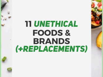 unethical-foods-brands-replacements-Human-of-Impact-eco-friendly-sustainable-ethical
