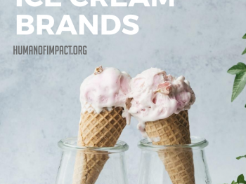 Frozen desserts are a craving that everyone should enjoy! And when it comes to traditional ice creams, there are many dairy-free options available. So, whether you are vegan, lactose-intolerant, calorie-conscious, or an adventurous foodie, here are some vegan ice cream brands that will DEFINITELY satisfy your ice cream cravings. #ethicaleating #veganbrands #healthyeating